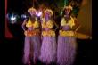 Baile do Hawaii 2014